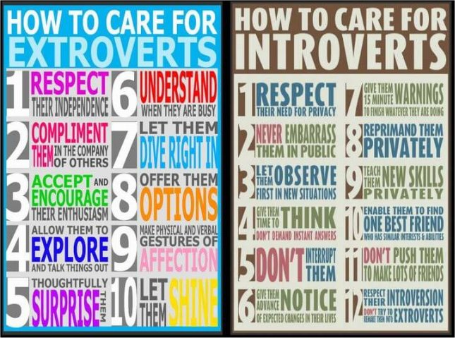 how much of the population is introverted?